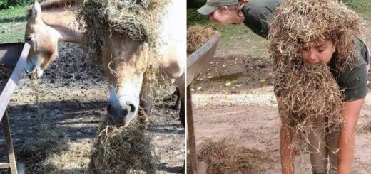 zookeepers-as-animals-16