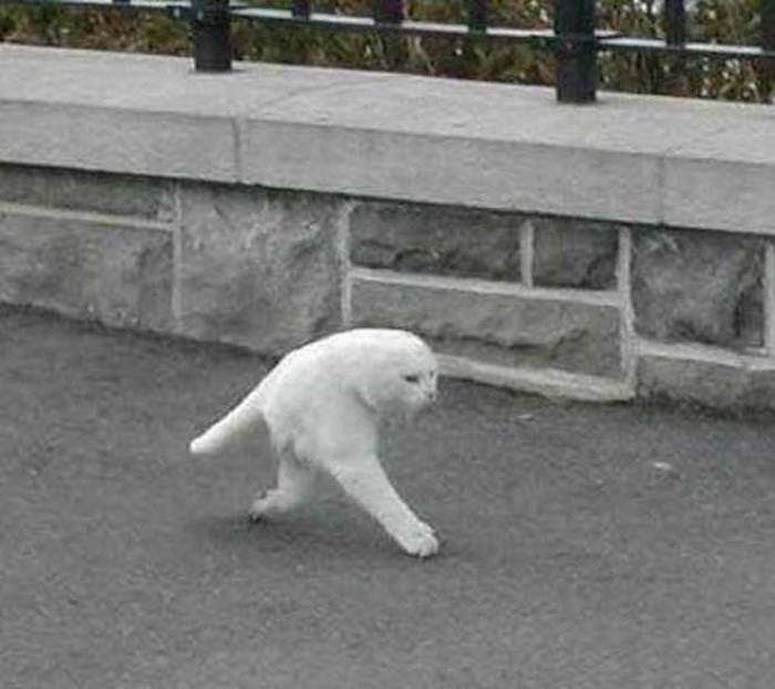 24 Epic Fail Google Street View Pictures That Are Hilarious -08
