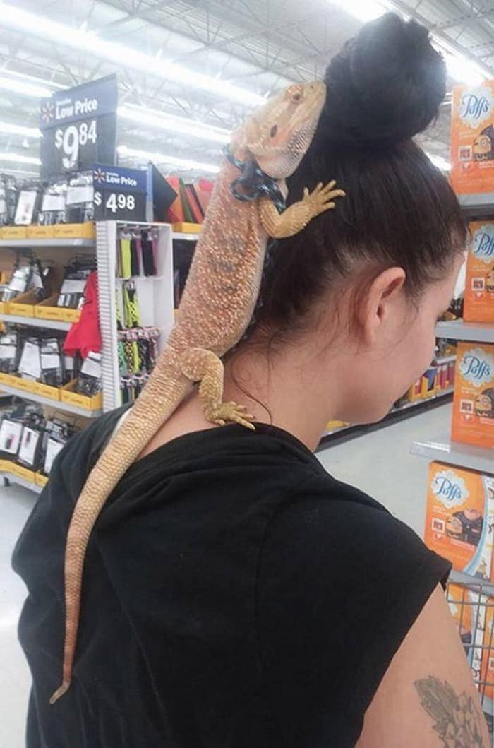 The 24 Weird People of Walmart That Are on Another Level -14