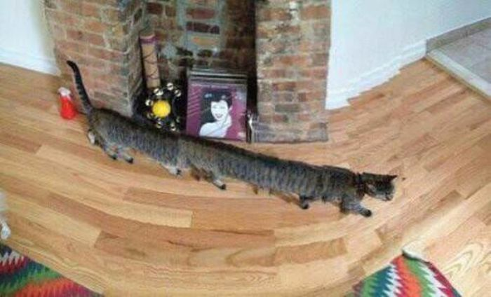 40 Hilarious Panorama Fails That Will Make You LOL -13
