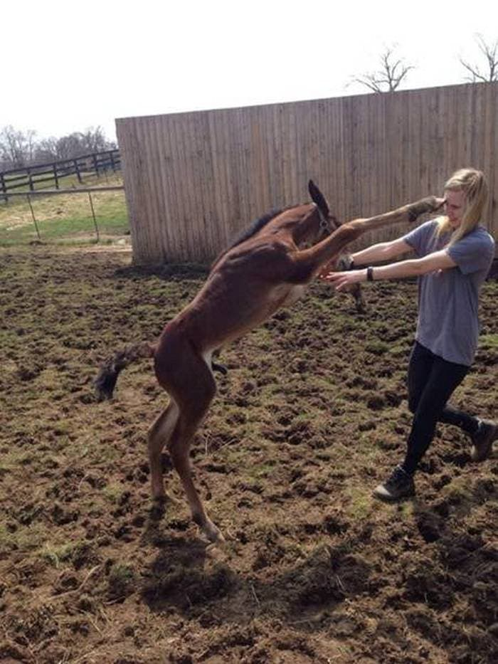 50 Perfectly Timed Photos That Will Blow Your Mind Seriously -19