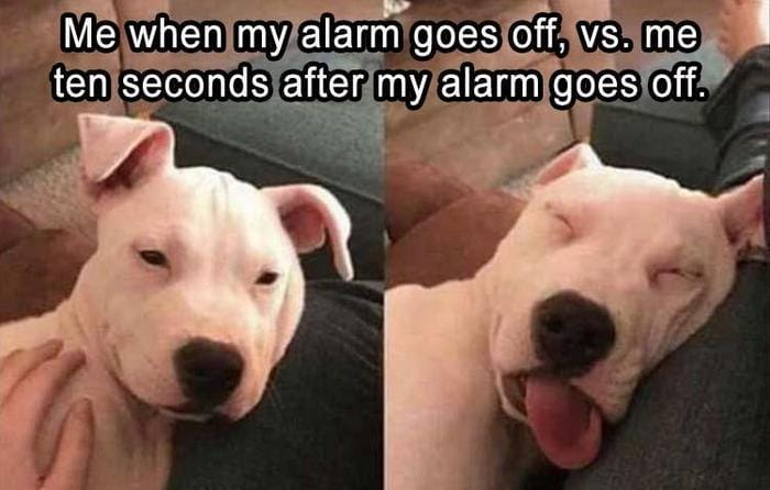 Daily Funny Memes And Pictures Release 4 (63 Pics)-13