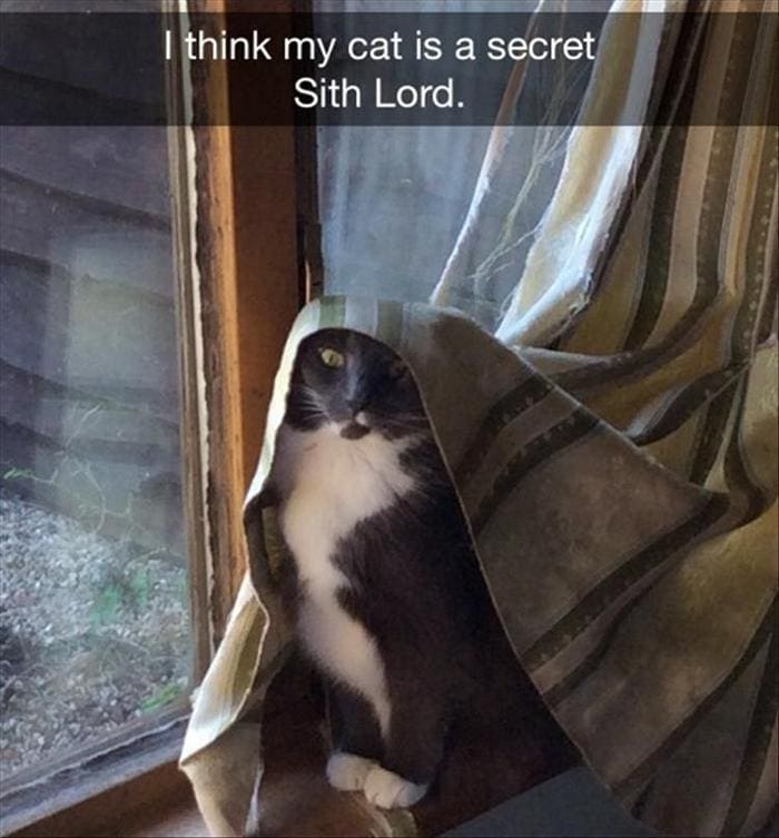 Funny Animal Pictures Of The Day Release 6 (90 Photos)-18