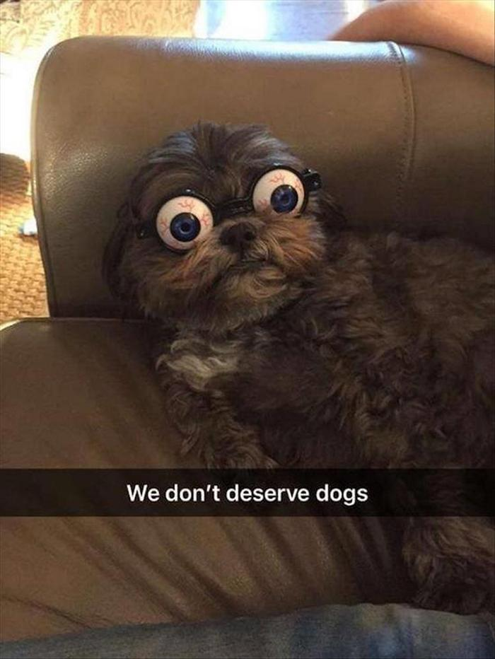 Funny Animal Pictures Of The Day Release 7 (100 Photos)-31