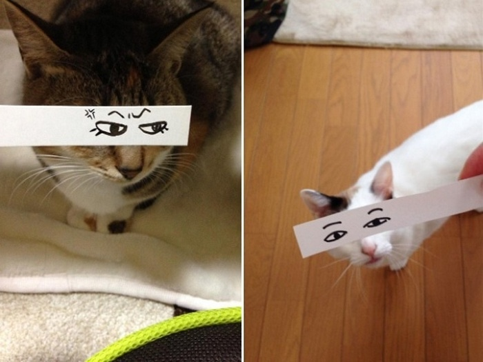 Cats With Cartoon Mouths And Eyes (19 Pics)-03
