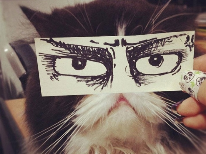 Cats With Cartoon Mouths And Eyes (19 Pics)-10