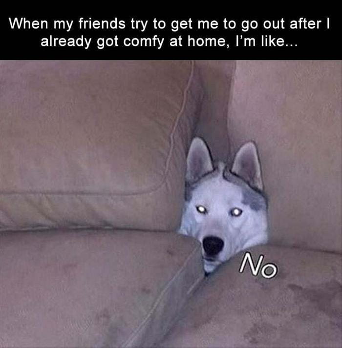 Daily Funny Memes And Pictures Release 8 (35 Pics)-08