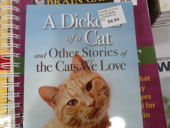 24 Funniest Sticker Placement Fails Ever-19