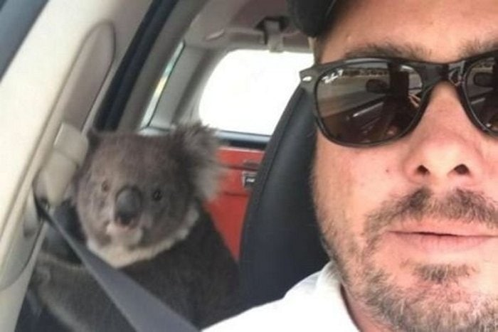 24 Best Meanwhile In Australia Photos-02