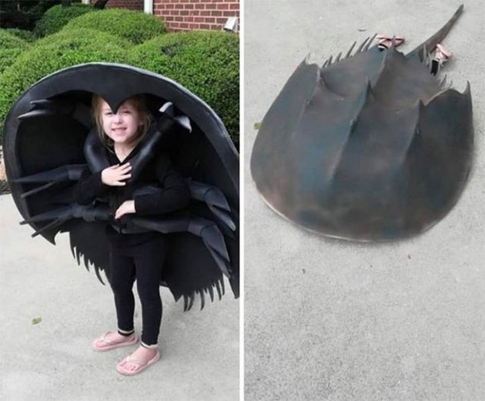 50 Awesome Halloween Costumes That Will Blow Your Mind-08