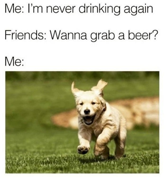 51 Hilarious Alcohol Memes For Anyone Who Has A Borderline Drinking Problem-18