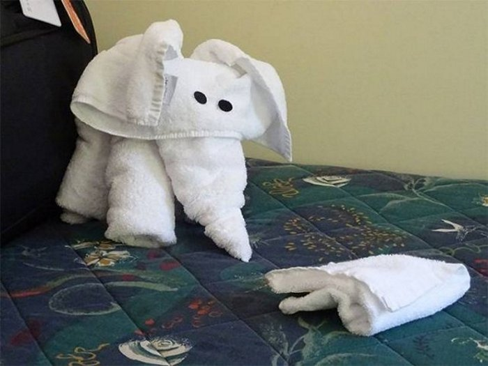 30 Best Folded Towel Art Images That Will Blow Your Mind-07
