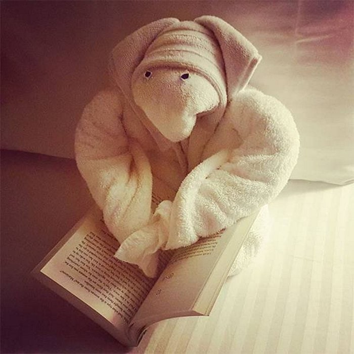 30 Best Folded Towel Art Images That Will Blow Your Mind-09