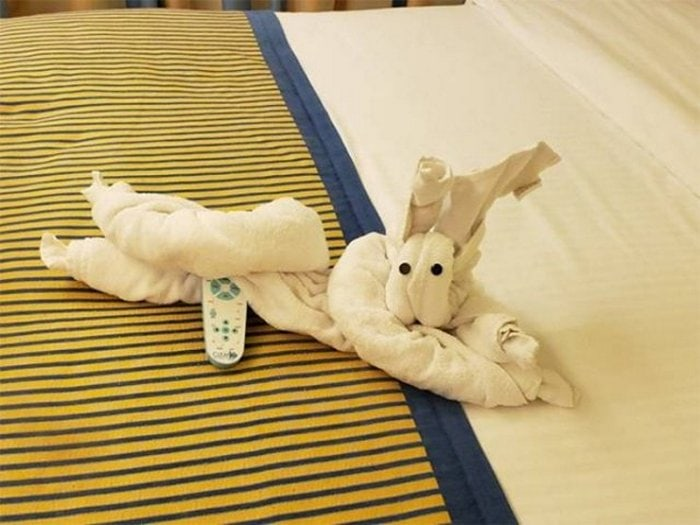 30 Best Folded Towel Art Images That Will Blow Your Mind-10