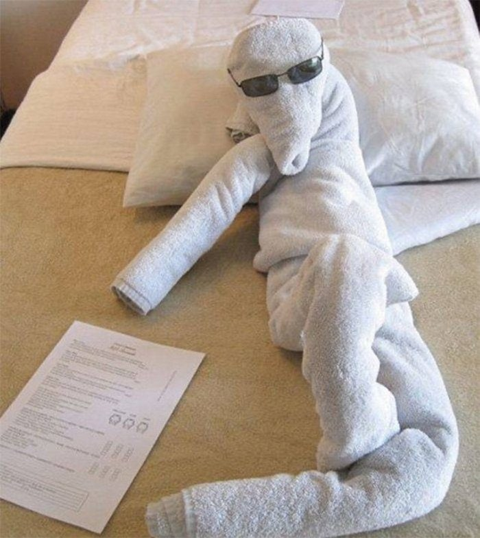 30 Best Folded Towel Art Images That Will Blow Your Mind-20